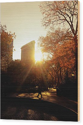 Flatiron Building Sunset - Madison Square Park Wood Print by Vivienne Gucwa