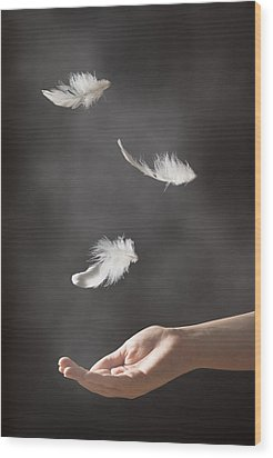 Floating Feathers Wood Print by Amanda Elwell