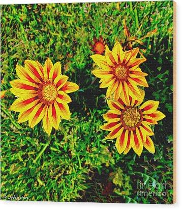 Flowers Thousand Trails  Wood Print by Bob and Nadine Johnston