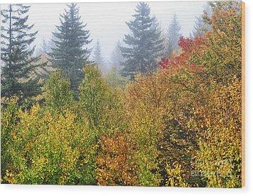 Fog Fall Day Wood Print by Thomas R Fletcher