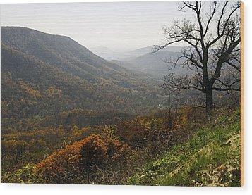Foggy Fall Morning Wood Print by Lynn Bauer