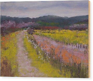 Follow The Daisies Wood Print by David Patterson