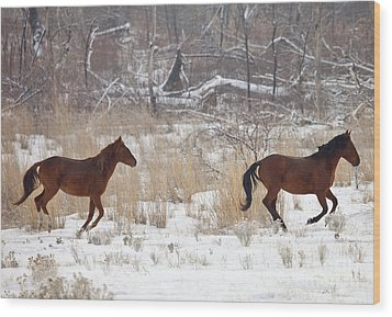 Follow The Leader Wood Print by Mike  Dawson