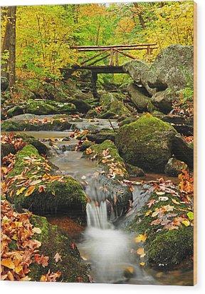 Foot Bridge- Macedonia Brook State Park Wood Print by Thomas Schoeller