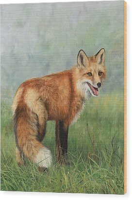 Fox  Wood Print by David Stribbling