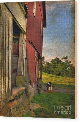 Free Range Wood Print by Lois Bryan