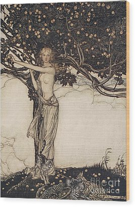 Freia The Fair One Illustration From The Rhinegold And The Valkyrie Wood Print by Arthur Rackham