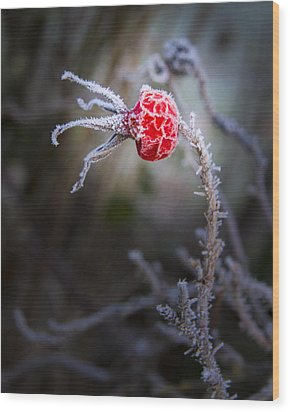 Frosted Wood Print by Jean Noren