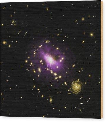 Galaxy Cluster Rx J1532 Wood Print by Nasa/cxc/stanford/j.hlavacek-larrondo Et Al/esa/stsci/m.postman And Clash Team