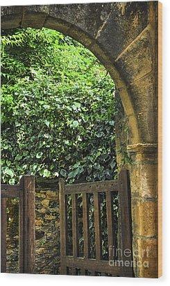 Garden Gate In Sarlat Wood Print by Elena Elisseeva