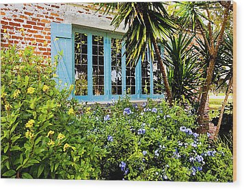 Garden Window Db Wood Print by Rich Franco