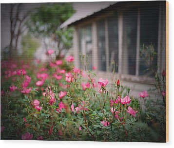 Gardens Of Pink Wood Print by Linda Unger