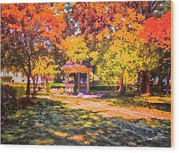 Gazebo On A Autumn Day Wood Print by Thomas Woolworth