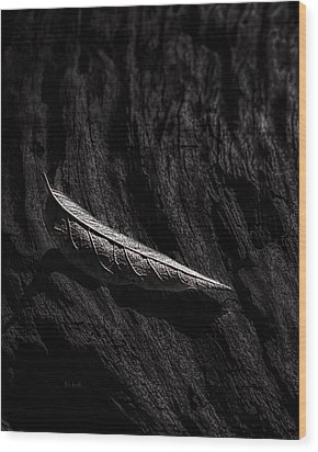 Gently Resting Wood Print by Bob Orsillo