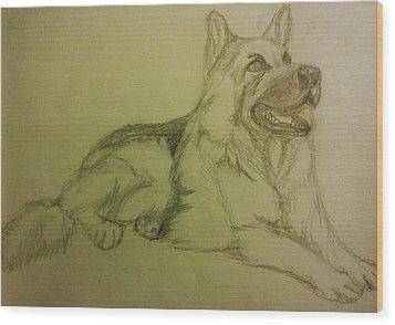 German Shepherd Wood Print by Christy Saunders Church
