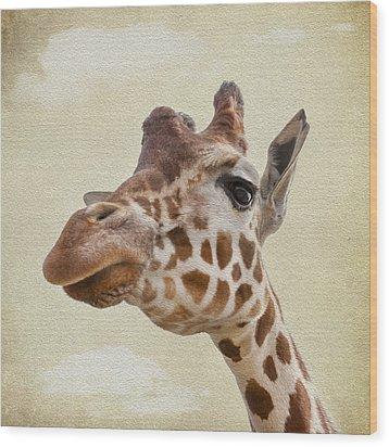 Giraffe Close Up Wood Print by Svetlana Sewell