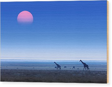 Giraffes On Salt Pans Of Etosha Wood Print by Johan Swanepoel