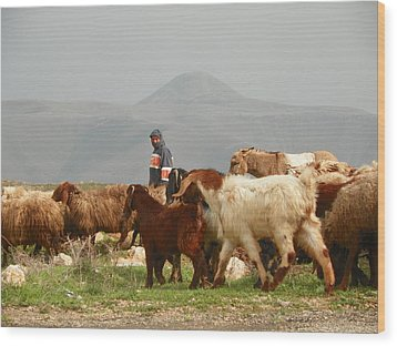 Goat Herder In Jordan Valley Wood Print by Noreen HaCohen