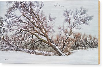 Going Softly Into Winter Wood Print by Betty LaRue