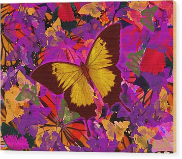 Golden Butterfly Painting Wood Print by Alixandra Mullins