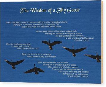 Goose Wisdom Wood Print by Mike Flynn
