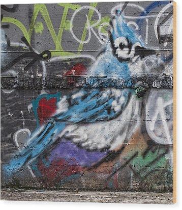 Graffiti Bluejay Wood Print by Carol Leigh