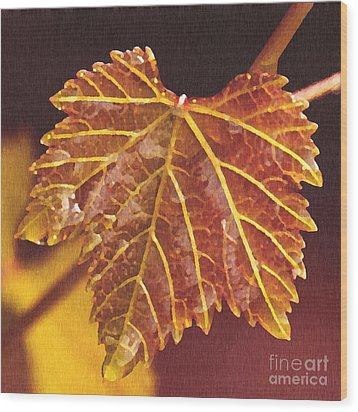 Grapevine In Fall Wood Print by Artist and Photographer Laura Wrede