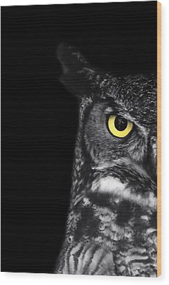 Great Horned Owl Photo Wood Print by Stephanie McDowell