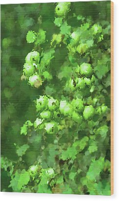 Green Apple On A Branch Wood Print by Toppart Sweden