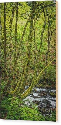 Green Green Wood Print by Jon Burch Photography