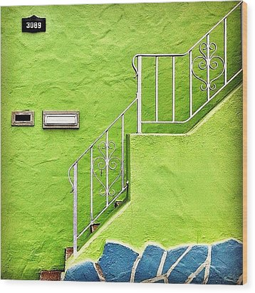 Green House  Wood Print by Julie Gebhardt