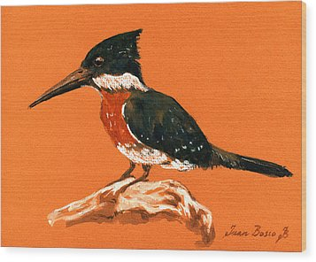 Green Kingfisher Wood Print by Juan  Bosco