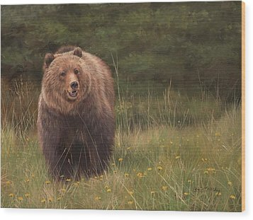 Grizzly Wood Print by David Stribbling