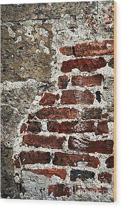 Grunge Brick Wall Wood Print by Elena Elisseeva