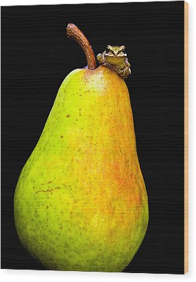 Guest A-pear-ance Wood Print by Jean Noren