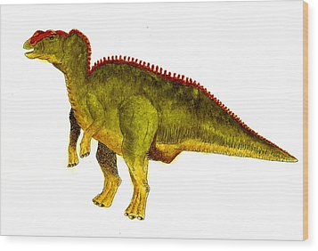 Hadrosaurus Wood Print by Michael Vigliotti
