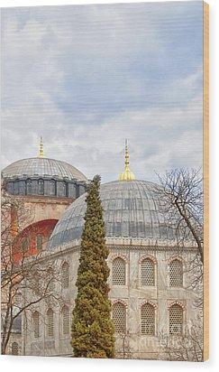 Hagia Sophia 11 Wood Print by Antony McAulay