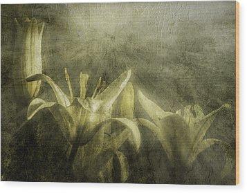 Halleluiah Wood Print by Diane Schuster