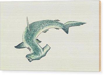 Hammerhead Shark Wood Print by Michael Vigliotti