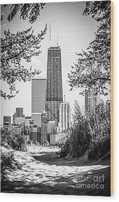 Hancock Building Through Trees Black And White Photo Wood Print by Paul Velgos