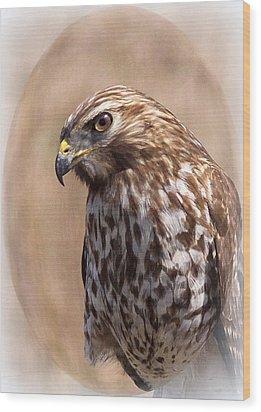 Hawk - Sphere - Bird Wood Print by Travis Truelove