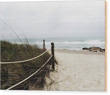 Hazy Beach Day Wood Print by Julie Palencia