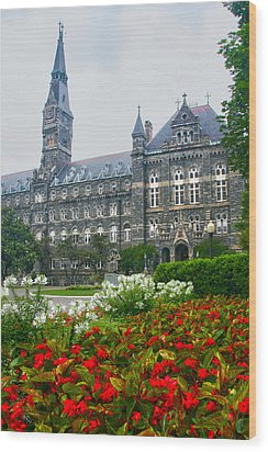 Healy Hall Wood Print by Mitch Cat