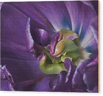 Heart Of A Purple Tulip Wood Print by Rona Black