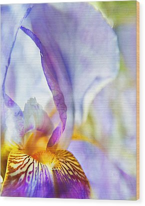 Heavenly Iris Wood Print by Theresa Tahara