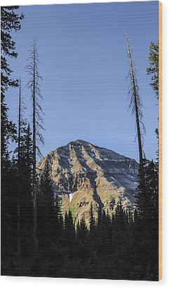 Hesperus Mountain Wood Print by Aaron Spong