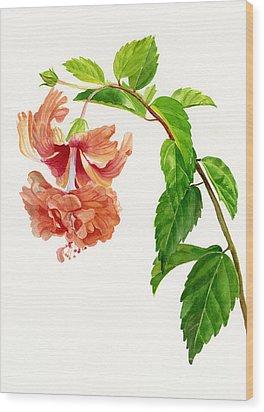 Hibiscus El Capitolio Sport Wood Print by Sharon Freeman