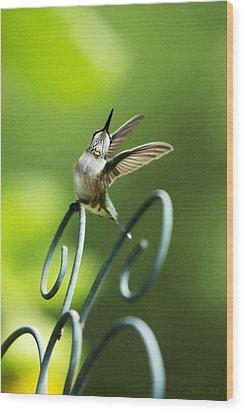 High Spirit Hummingbird Wood Print by Christina Rollo