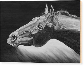 Horse Head Black And White Study Wood Print by Renee Forth-Fukumoto