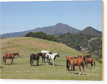 Horse Hill Mill Valley California 5d22672 Wood Print by Wingsdomain Art and Photography